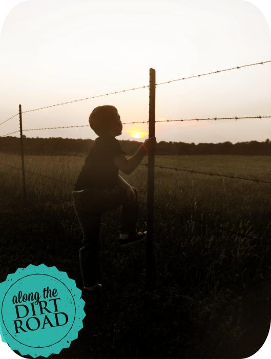 luke fence