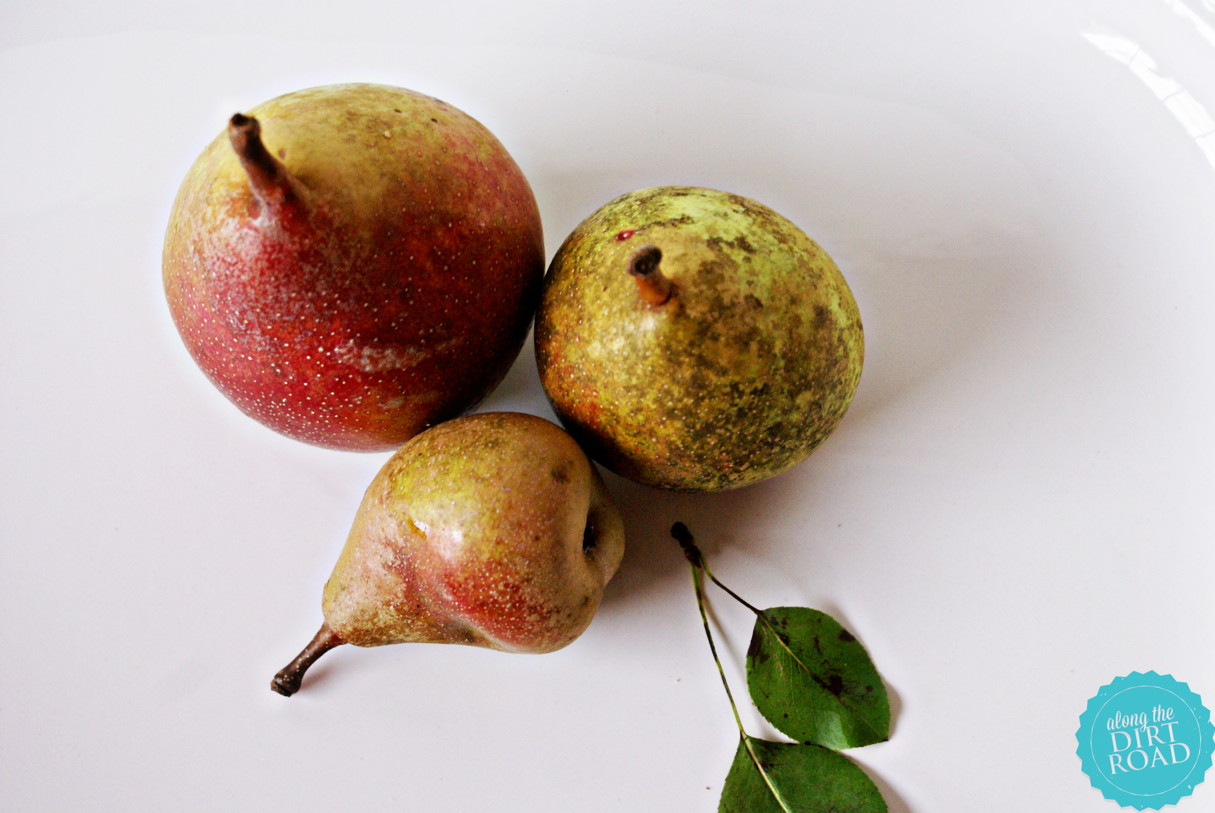 the process is so simple for freezing that i can tell you in a few simple steps - Can You Freeze Pears